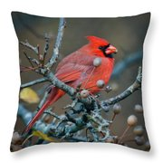 Cardinal In The Berries Throw Pillow