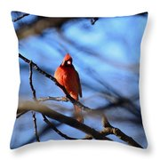 Cardinal In The Midst Throw Pillow