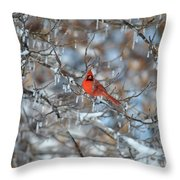 Cardinal In Winter Throw Pillow