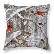 Cardinal Meeting In The Snow Throw Pillow