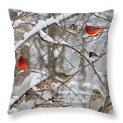 Cardinal Meeting In The Snow Throw Pillow