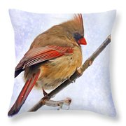 Cardinal On An Icy Twig - Digital Paint Throw Pillow