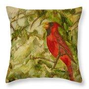 Cardinal Singing Throw Pillow