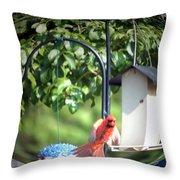Cardinal Tail Wide Landing Digital Art Throw Pillow