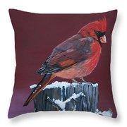 Cardinal Winter Songbird Throw Pillow