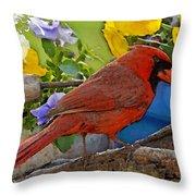 Cardinal With Pansies And Decorations Photoart Throw Pillow