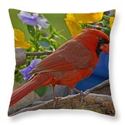 Cardinal With Pansies Throw Pillow