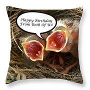 Cardinals Birthday Card Throw Pillow