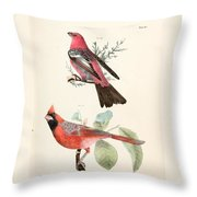 Cardinals Throw Pillow by Philip Ralley