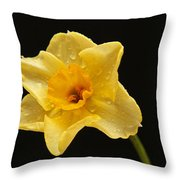 Caressed By Water Throw Pillow