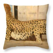 Caresses Throw Pillow
