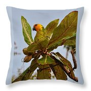 Caribbean Parakeet Throw Pillow