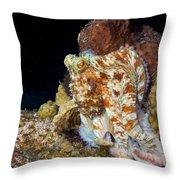 Caribbean Reef Octopus II Throw Pillow