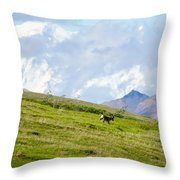 Caribou And Mount Mckinley Throw Pillow
