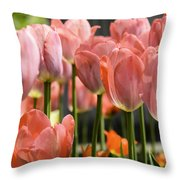 Caring Pink Tulip Time Throw Pillow