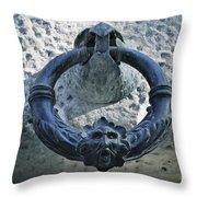 Carlos V Palace Detail Throw Pillow