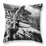 Carmel Beach City Park Black And White Throw Pillow