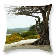 Carmel California Beach Throw Pillow