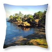 Carmel Meadows Beach At Point Lobos Throw Pillow