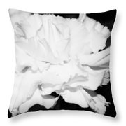 Carnation Against Black Throw Pillow
