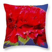 Carnation Carnation Throw Pillow