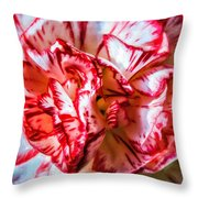 Carnation Watercolor Throw Pillow
