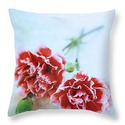 Carnations Throw Pillow by Stephanie Frey