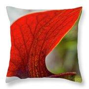 Carnivorous Plants 2 Throw Pillow