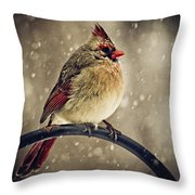 Carolina Cardinal Throw Pillow