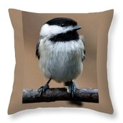 Carolina Chickadee Throw Pillow