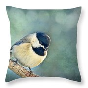 Carolina Chickadee With Decorative Frame II  Throw Pillow