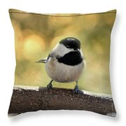 Carolina Chickadee With Decorative Frame IIi Throw Pillow
