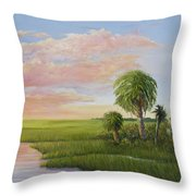 Carolina Classic Throw Pillow