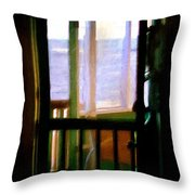 Carolina Morning Throw Pillow