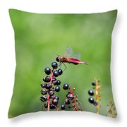 Carolina Saddlebags Throw Pillow