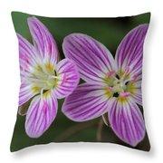 Carolina Spring Beauty Duo Throw Pillow