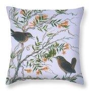 Carolina Wren And Jasmine Throw Pillow by Ben Kiger