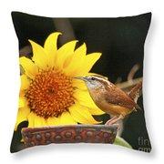 Carolina Wren And Sunflowers Throw Pillow