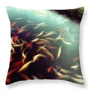Carp Pond Colors Throw Pillow