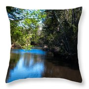 Carpenters Park 5 Throw Pillow