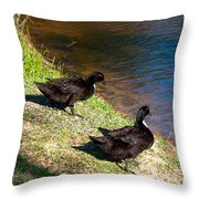Carpenters Park-ducks Throw Pillow
