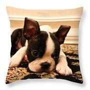 Carpet Cleaner Throw Pillow