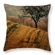 Carpet Fields Of Moravia Throw Pillow