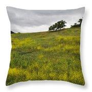 Carpet Of Malibu Creek Wildflowers Throw Pillow