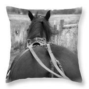 Carraige View Horse Throw Pillow