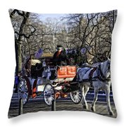Carriage Driver - Central Park - Nyc Throw Pillow