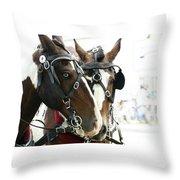 Carriage Horse - 3 Throw Pillow