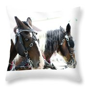 Carriage Horse - 5 Throw Pillow