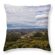 Carrizo Canyon Throw Pillow