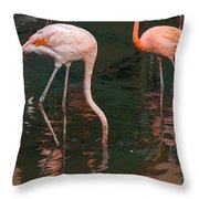 Cartoon - A Flamingo With Its Head Under Water In The Jurong Bird Park Throw Pillow